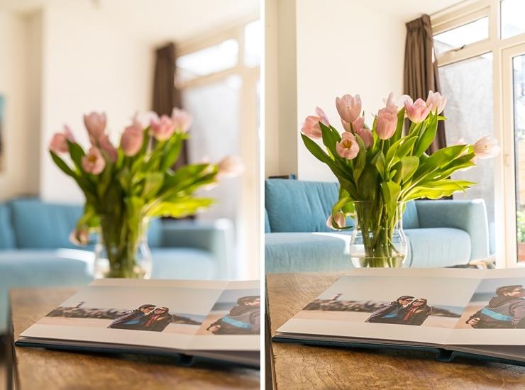 leren fotograferen fotografie album tulpen bloemen groen blauw